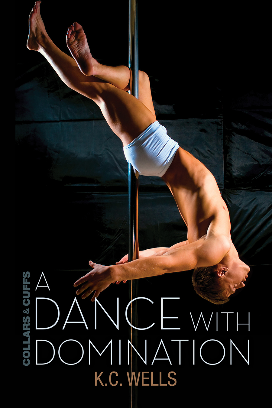Sexiest Male Pole Dancer Gets The Ladies Applauding