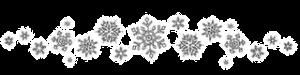 snowflake_divider[11]